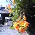 729_toukanjinouzenka.jpg