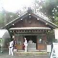 8_1_tumesyo.jpg