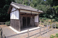 hujimimon