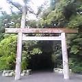 torii-9.jpg