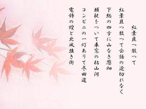 Koyo14