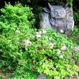 牛鬼の像が牙剥く木下闇