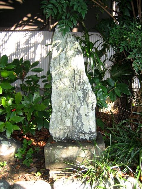 門に入れば蘇鉄に蘭のにほひかな  松尾芭蕉