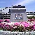 岡崎駅西口閑と花つつじ