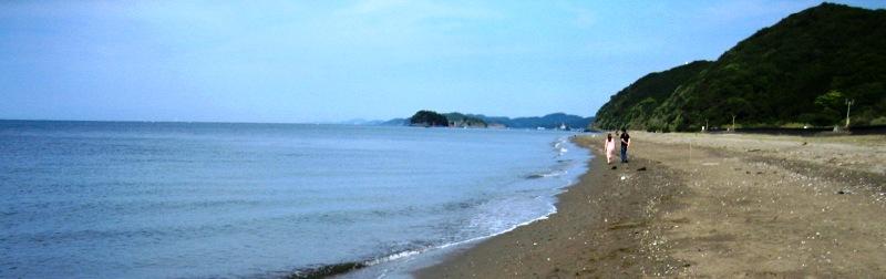 浜昼顔空より青き海の凪